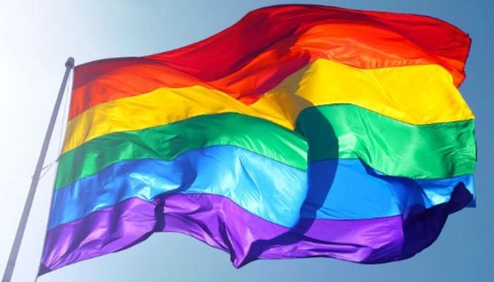 Ce nu stiai despre casatoriile gay?